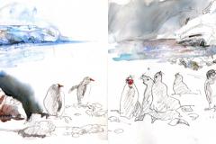 2020-10-Antarctique-Fort-point-1-et-2-WCA-Copie