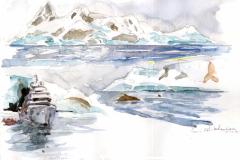 2020-12-Antarctique-Wilhelmina-bay-2-WCA-Copie