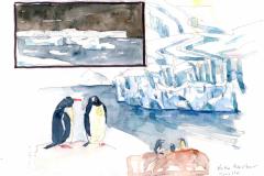 2020-29-Antarctique-Neko-Arbor-WCA