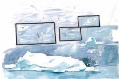 2020-33-Antarctique-Orques-WCA