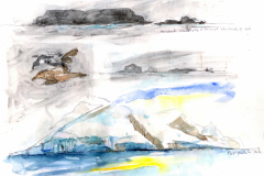 2020-9-Antarctique-Premier-iceberg-WCA-Copie