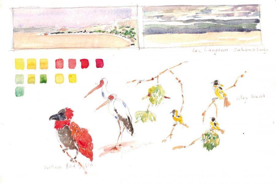 2013-Ethiopie-Lac-Chamo-et-oiseaux